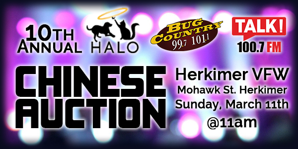 10th HALO CHINESE AUCTION